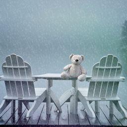 lonely teddy feeling blue in rain